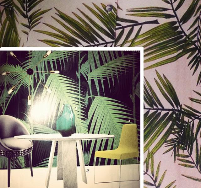 Palmen Prints