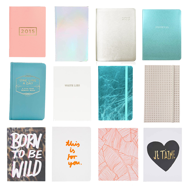 diary notebooks notes 2015